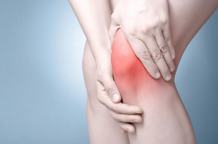 Ein entzündetes Kniegelenk ist schmerzhaft und geht oftmals auf eine bakterielle Infektion zurück.